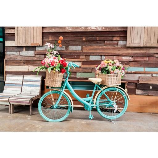 Tablou canvas Flori pe Bicicletă