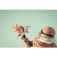 Tablou canvas avion din lemn