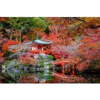 Grădină Japoneză cu templu