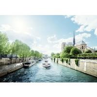 Tablou canvas Paris - Sena și Catedrala Notre Dame