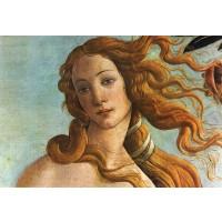 Tablou Venus - detaliu - Sandro Botticelli